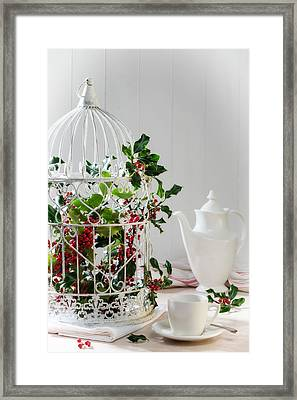 Holly And Berries Birdcage Framed Print by Amanda Elwell