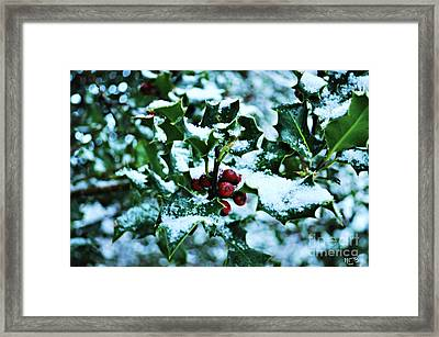 Framed Print featuring the photograph Holly And New Snow by Mindy Bench