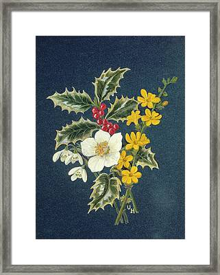 Holly, Christmas Rose, Snowdrop And Winter Jasmine Wc On Paper Framed Print