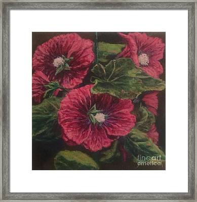 Red Hollyhocks Framed Print