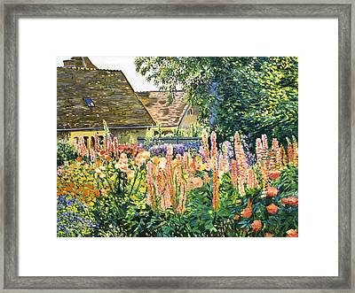 Hollyhocks Garden Framed Print by David Lloyd Glover