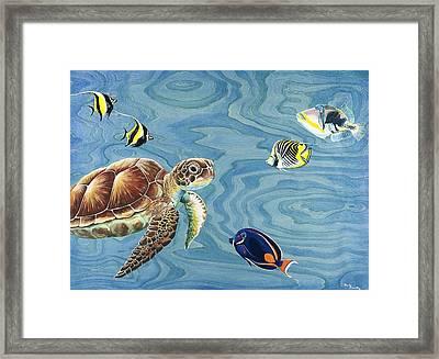 Holoholo Sea Turtle Framed Print