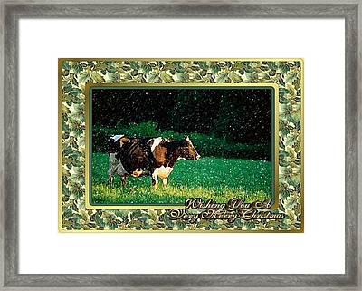 Holstein Dairy Cow Christmas Card Framed Print by Olde Time  Mercantile