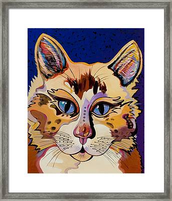 Holy Cat Framed Print