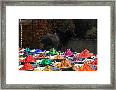 Holy Colors Framed Print