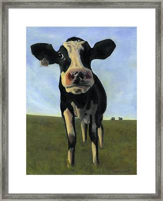 Holy Cow Framed Print by Dana Feagin