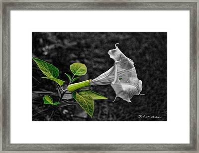 Homage To The Moon Framed Print