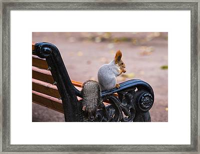 Home Alone - Featured 3 Framed Print by Alexander Senin