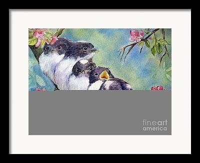 Fluffy Chicks Framed Prints
