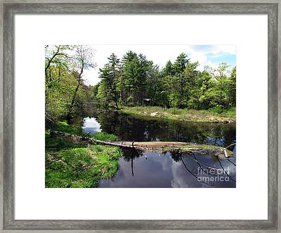 Home Away From Home Framed Print by Roxanne Marshal