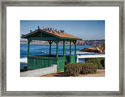 Home By The Sea Framed Print by Peter Tellone
