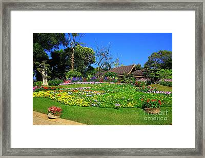 Home Gardening Zones Framed Print by Boon Mee