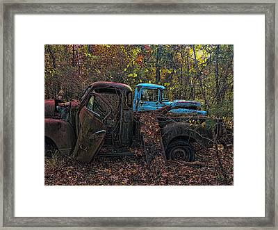 Home In The Woods Framed Print