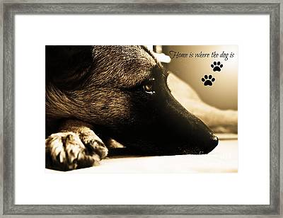 Home Is Where The Dog Is Framed Print