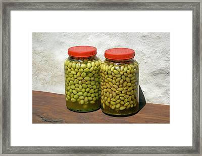 Home Made Olive Curing Framed Print