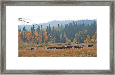 Home On The Range Framed Print by Heather Coen