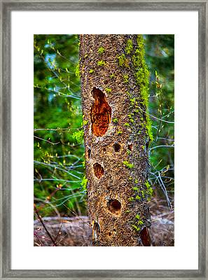 Home Sweet Home Framed Print by Omaste Witkowski