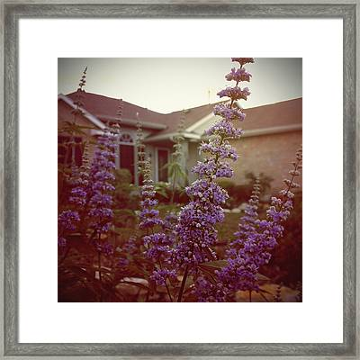Home Sweet Home Framed Print by Trish Mistric