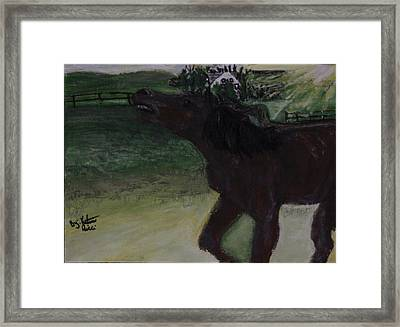 Home Sweet Horse Framed Print by Katrina Ricci