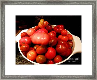 Homegrown Bounty  2 Framed Print by Tanya  Searcy