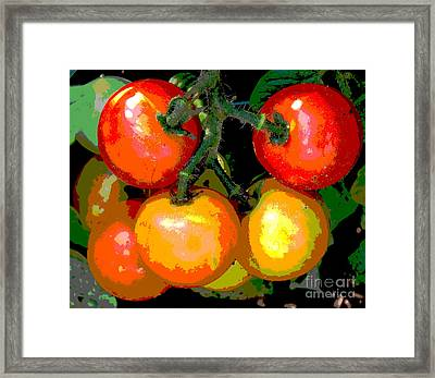 Homegrown Tomatoes Framed Print by Annette Allman