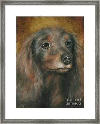 Homeless Pet Babe Framed Print by Stella Violano