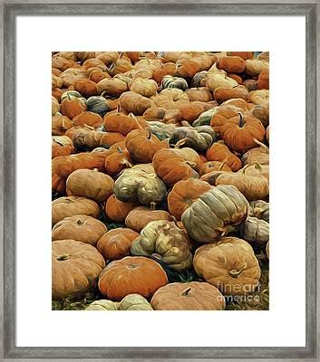Homeless Pumpkins Framed Print