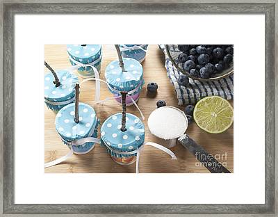 Homemade Blueberry Popsicles Framed Print by Juli Scalzi