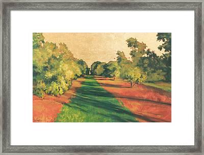 Homestead Grove 7 Framed Print by Carlynne Hershberger