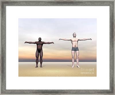 Homo Erectus Man Next To Modern Human Framed Print