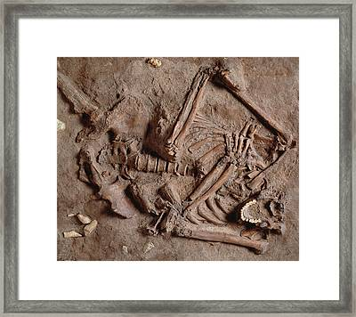 Homo Neanderthalensis Kebarah Burial Site Framed Print by Natural History Museum, London