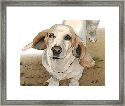Framed Print featuring the photograph Honey by Ferrel Cordle