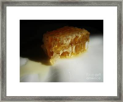 Framed Print featuring the photograph Honeycomb by Kristine Nora