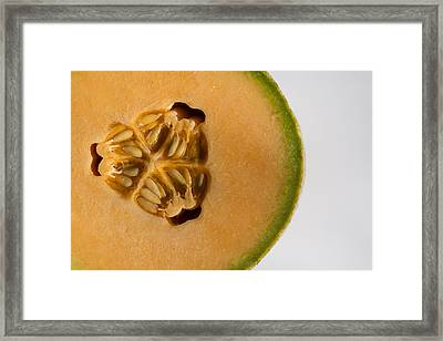 Honeydew 1 Framed Print