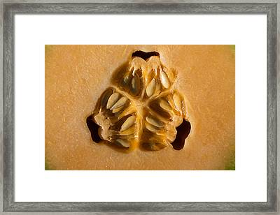 Honeydew Heart 2 Framed Print
