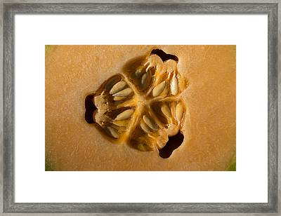 Honeyduew Heart 1 Framed Print