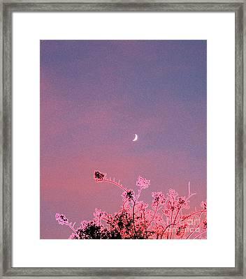 Honeymoon By Jrr Framed Print by First Star Art