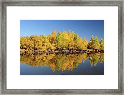 Honeymoon Lake Reflections, Steens Framed Print by Michel Hersen