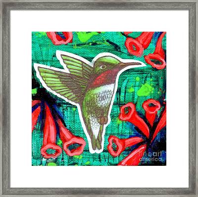 Honeysuckle Hummingbird Framed Print by Genevieve Esson
