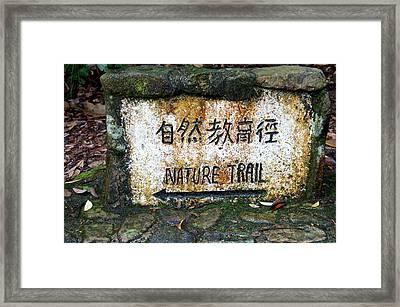 Hong Kong, Tai Po Kau Nature Park Trail Framed Print