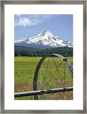 Hood Meadow Framed Print