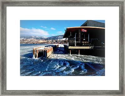 Hooded Merganser Restaurant Framed Print