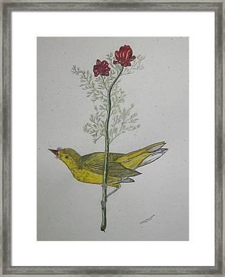 Hooded Warbler Framed Print by Kathy Marrs Chandler