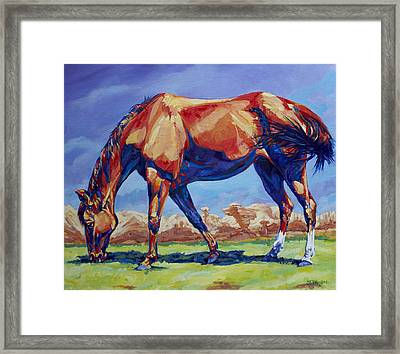 Hoodoo Horse Framed Print by Derrick Higgins
