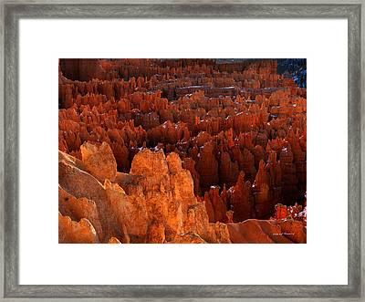 Hoodoo Texture Framed Print by Leland D Howard