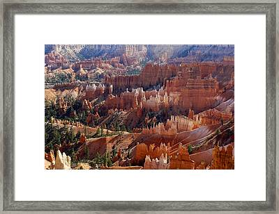 Hoodoos At Sunrise Point Framed Print