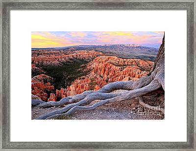 Hoodoos In The Canyon Framed Print