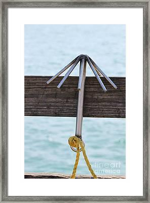 Hook Framed Print by Henrik Lehnerer