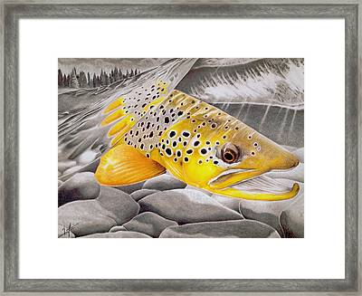 Hookjaw On The Move Framed Print by Nick Laferriere