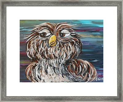 Hoo's Your Daddy Framed Print by Eloise Schneider
